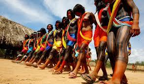 Aldeia dos índios Suruís. Foto Funai.