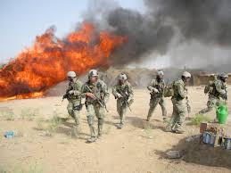 Plantação de maconha incendiada por agentes federais americanos.